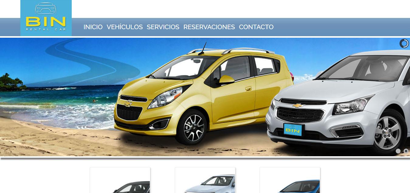 Bin Rental Car